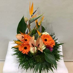 Picture of Arrangement Heracles