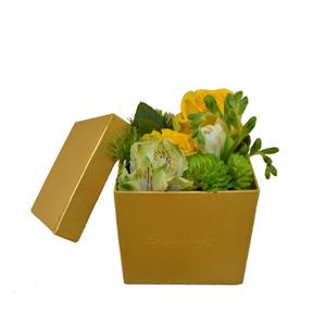 Picture of Box 0019