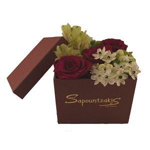 Εικόνα της Κουτί 0022