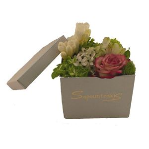 Picture of Box 0023