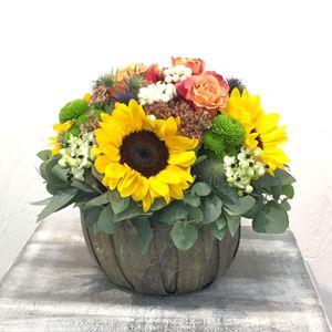 Picture of Colorful Arrangement