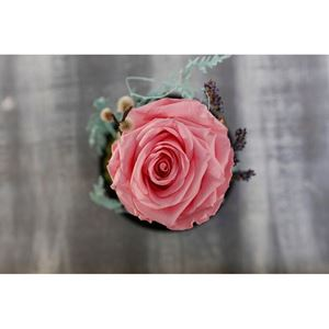 Picture of Forever Rose Pink Big Size