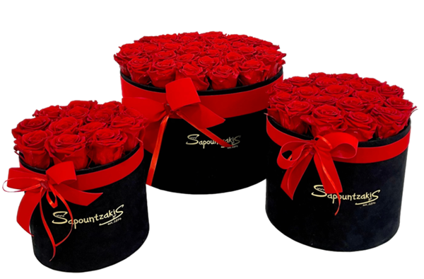 Picture for category FOREVER ROSES BOXES