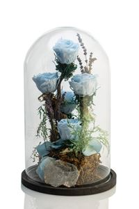 Picture of Forever Rose Light Blue Giant