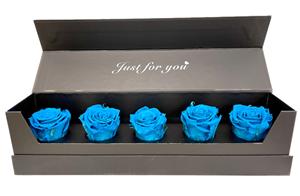Εικόνα της Κουτί Πεντάδα Μπλε