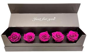 Εικόνα της Κουτί Πεντάδα Φούξια