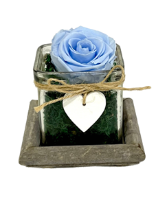 Picture of Wooden Base Forever Light Blue
