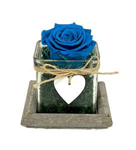Picture of Wooden Base Forever Blue