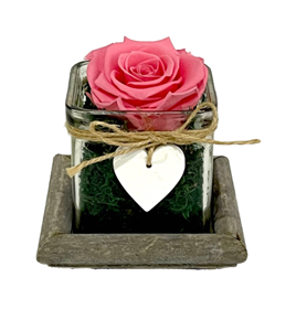 Picture of Wooden Base Forever Pink