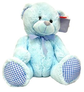 Picture of Teddy Bear Blue