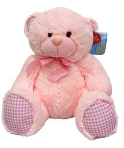 Picture of Teddy Bear Pink